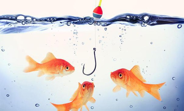рыбаков клиент